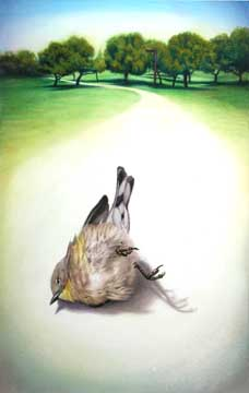 Stunned, 2005, watercolor